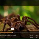 VLC pour Windows 8.1