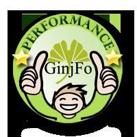 Performance 2015 GinjFo