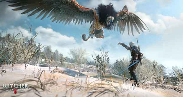 The Witcher 3 : Wild Hunt, recommandations Nvidia