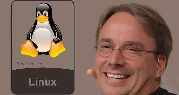 Linus Benedict Torvalds est connu pour avoir créé en 1991 le noyau Linux dont il continue de diriger le développement.