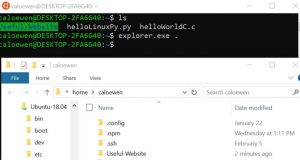 Windows 10 v1903, l'explorateur de fichiers va prendre en charge les fichiers Linux