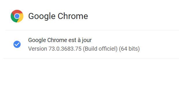 Navigateur Google Chrome 73