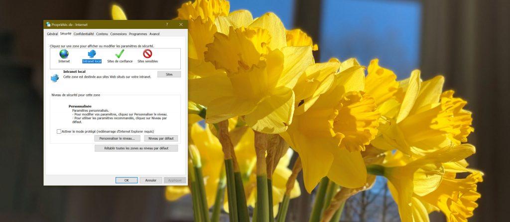 Windows 10 et les Options Internet