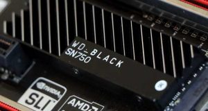 SSD WD Black SN750 1 To