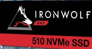 SSD IronWolf 510