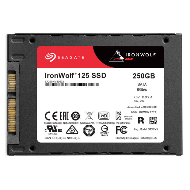 IronWolf 125 SSD (NAS)