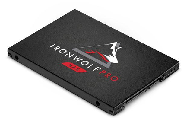 SSD IronWolf Pro (NAS)