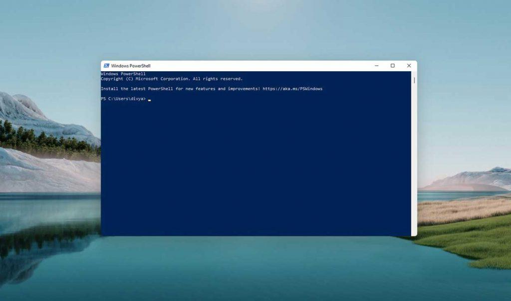 Windows 11 et le PowerShell